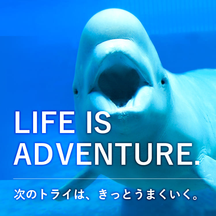 LIFE IS ADVEBTURE. 次のトライは、きっとうまくいく。